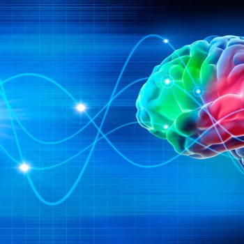 red and green brain activity levels